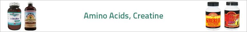 Amino Acids, Creatine