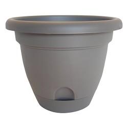 Bloem, Lcc. lucca planter - 6 inch, 12 ea