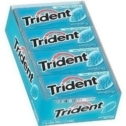 Trident wintergreen sugar free gums 18 ea - 12 pack