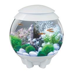 Oase - Aquatics biorb halo 15 mcr aquarium - 4 gal/15 liter, 1 ea