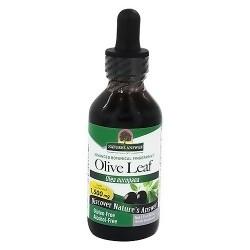Natures Answer Olive leaf, olea europaea alcohol free - 2 oz