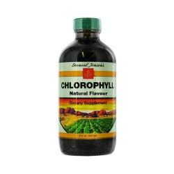 Bernard jensen chlorophyll liquid, natural flavor - 8 oz