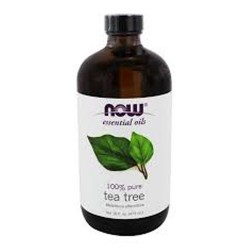 Now Foods Tea Tree Oi All Sizes - 16 oz