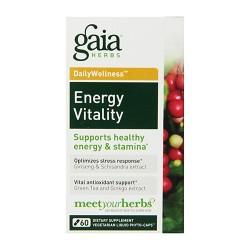 Gaia Herbs Energy Vitality Liquid Phyto Capsules, energy and samina - 60 ea