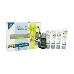Andalou Naturals Get Started Skin Clarifying Kit - 1 ea