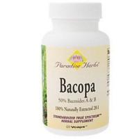 Bacopa - 60 ea
