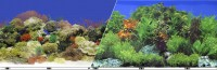 Blue Ribbon Pet Products background double-sided coral reef/freshwater - 12in x 50ft, 6 ea