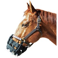 Best Friend Equine free-to-eat cribbing muzzle - horse, 1 ea