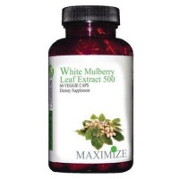 Maximum international white mulberry leaf extract 500 veg capsules -  60 ea