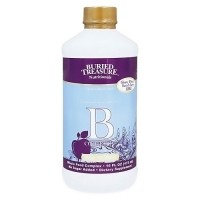Buried Treasure Vitamin B Complete High Potency Liquid - 16 oz