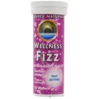 Source Naturals Wellness fizz natural berry flavor immune defense wafers - 10 ea