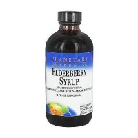 Planetary Herbals Elderberry Syrup For Natural Defenses - 8 oz