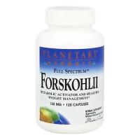 Planetary Herbals Forskohlii Full Spectrum 130 mg Capsules - 120 ea