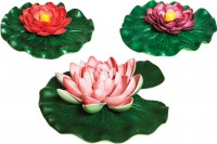 Oase - Living Water floating lily pad variety pack - 6 ea