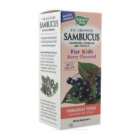 Natures Way Sambucus For Kids Elderberry Syrup - 8 oz