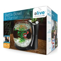 Elive, Llc. betta bowl and planter - .75 gallon, 6 ea