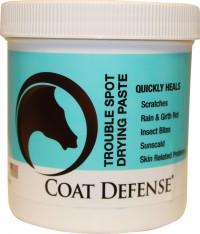 Coat Defense trouble spot drying paste - 24 oz, 16 ea