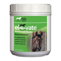 Kentucky Performance Prod elevate maintenance powder supplement for horses - 2 pound, 6 ea