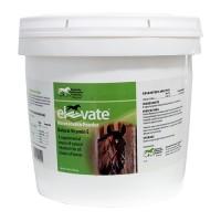 Kentucky Performance Prod elevate maintenance powder supplement for horses - 10 lb, 4 ea
