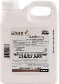 Monterey P azera gardening - quart, 6 ea