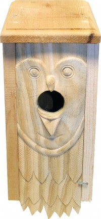 Welliver Outdoors welliver carved bluebird house owl - 4 ea