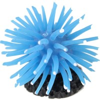 Poppy Pet sea anemone - small, 96 ea