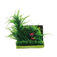 Poppy Pet bushy foreground pod #4 - 8 inch, 54 ea