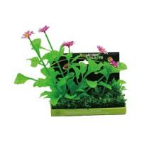Poppy Pet bushy foreground pod #8 - 8 inch, 54 ea