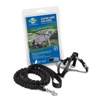 Petsafe - General come with me kitty harness & bungee leash - medium, 24 ea