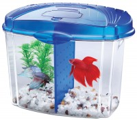 Aqueon Products - Glass betta bowl kit with divider - .5 gallon, 6 ea