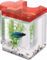 Aqueon Products - Glass betta puzzle kit - .5 gal, 4 ea