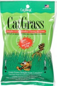 Stewarts Treats cat grass bag - 100 gram, 24 ea