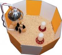 Farm Innovators-Farm baby chick starter home - 8 ea