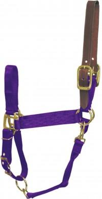 Hamilton Halter Company adjustable horse halter with leather headpole - average, 1 ea