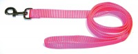 Hamilton Pet Company single thick nylon lead - 1 in x 6 ft, 1 ea