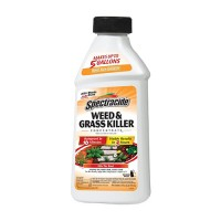 Spectracide weed and grass concentrate - 16oz, 6 ea