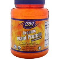 Now foods, organic plant protein, natural chocolate - 16 oz