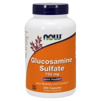 Now Foods Glucosamine Sulfate 750 mg for Joint Health - 240  capsules