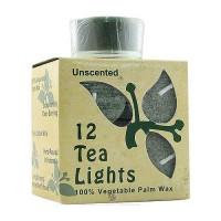 Aloha Bay Unscented Palm Wax Tea Light Green Candles - 0.7 oz