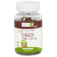 Natural Dynamix Kids Echinacea Vitamin C and Zinc -- 60 Gummies