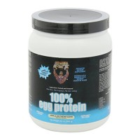 Healthy n fit 100 percent egg protein vanilla ice cream - 12 oz