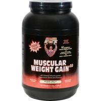 Healthy n fit 148437 muscular weight gain 2 vanilla - 2.5 Lb.