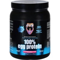 Healthy n fit 100 percent egg protein strawberry passion - 12 oz