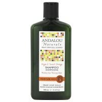 Andalou Naturals Moisture rich hair shampoo - 11.5 oz