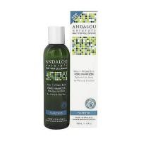 Andalou Naturals Aloe Plus Willow Bark Pore Minimizer - 6 oz
