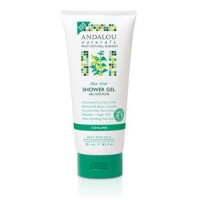 Andalou Naturals Body Cooling Shower Gel, Aloe Mint - 8.5 Oz